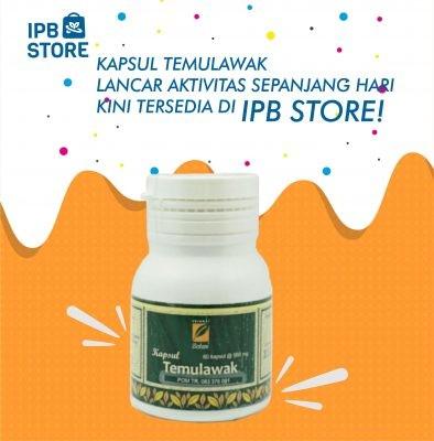 Kapsul Temulawak Ipb Store