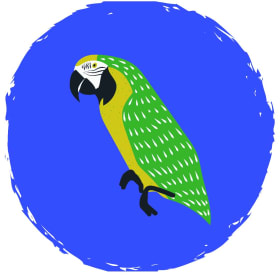 لوازم پرنده | پرشین پت لند