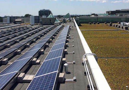 Photovoltaic solar panels and Toronto's largest green roof system