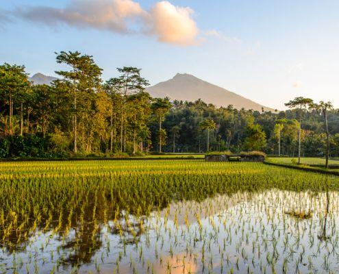 lombok-island-travel