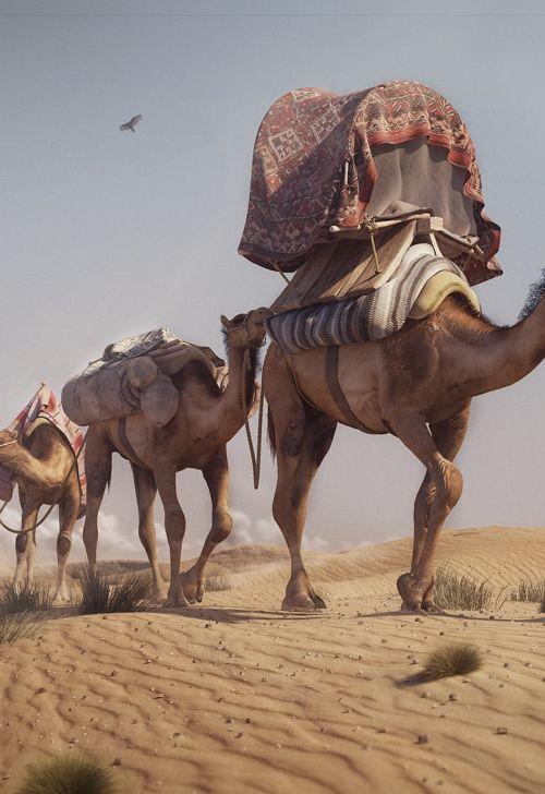 The caravan by najib bernoussi