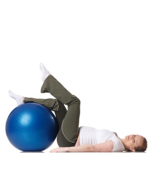 Fitball כדור פיטבול (פיזיו)