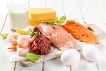 Proteiny - Živiny důležité nejen pro sportovce