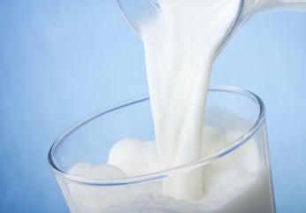 Mléko Laktózová intolerance