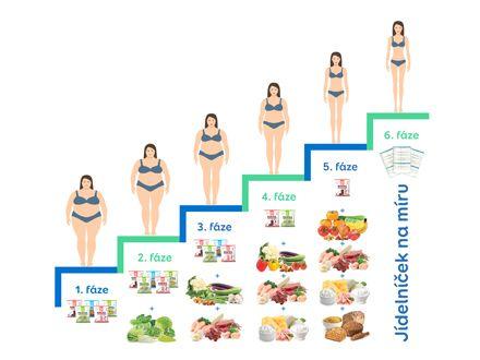 Fáze proteinové diety It's my life!