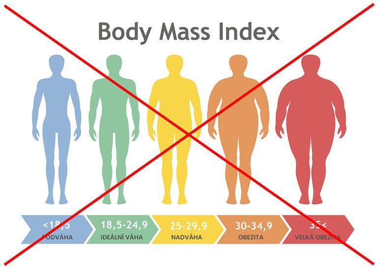 Analýza těla