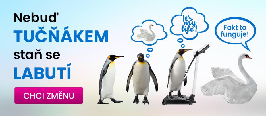 Nebuď tučňákem, staň se labutí