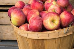Cara Menghilangkan Bau Mulut dengan Buah Apel