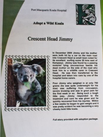 Crescent Head Jimmy