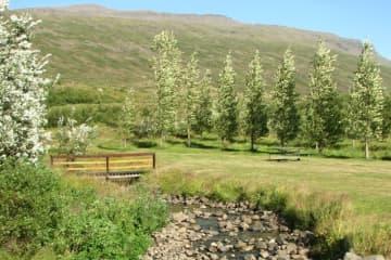 Fáskrúðsfjörður Campsite