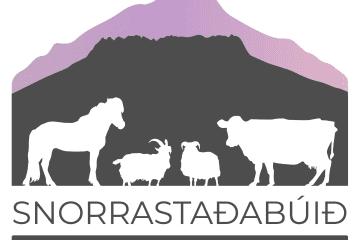 Ferðaþjónustan Snorrastöðum