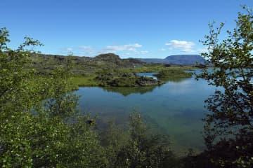 Myvatn Nature reserve