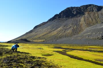 Þjófadalur