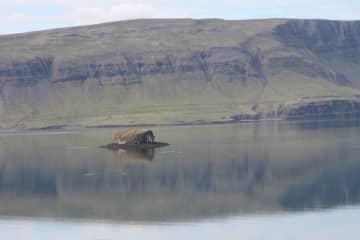 Geirsholmi in Hvalfjord