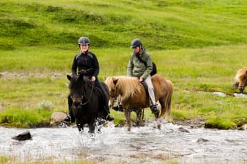 Eyjardalsá Horse Riding