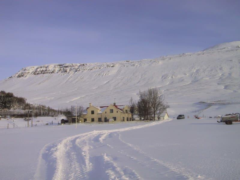 Vatnsdalsholar Visit North Iceland