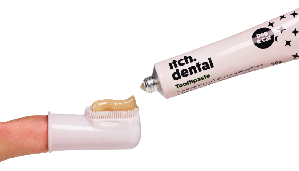 Itch Dental with brush