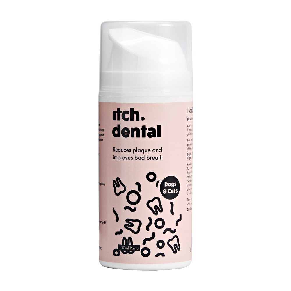 Itch dental