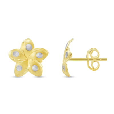 14k Yellow Gold Hawaiian Flower Plumeria Stud Earrings with Screw Back, 10.5mm x 11mm