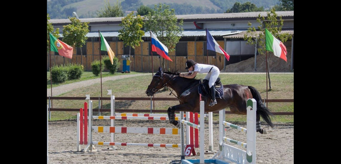 Fencing - Horse riding
