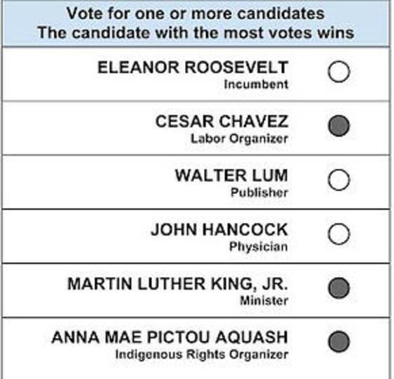 approval_voting_ballot_roosevelt_chavez