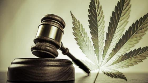 marijuana industry and banking