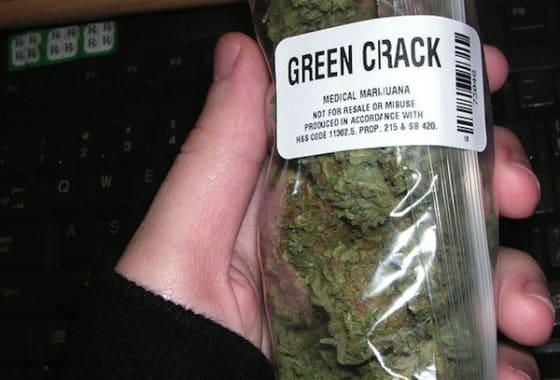 medical marijuana regulations