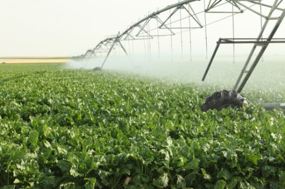 Sustainability of Agriculture Depends on Fracking Regulations