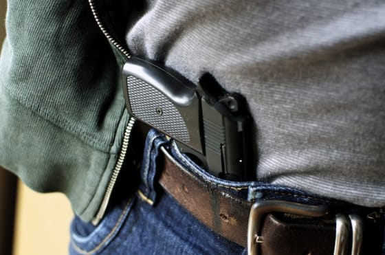 concealed handgun license