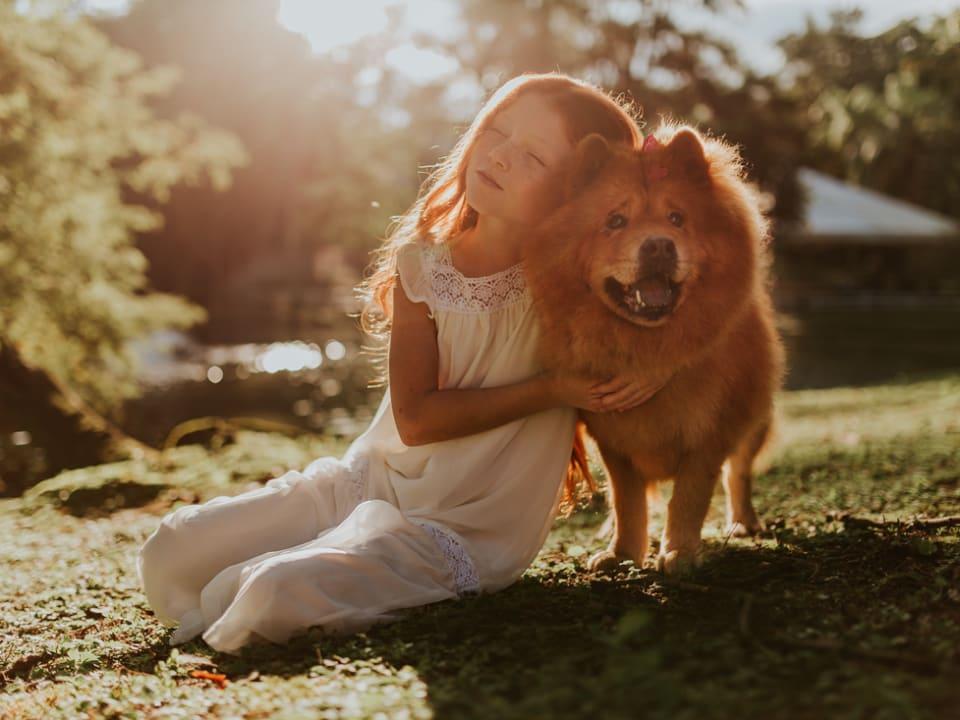 condomínios não podem proibir animais de estimação