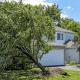 Responsabilidade por galhos de árvores e raízes no condomínio