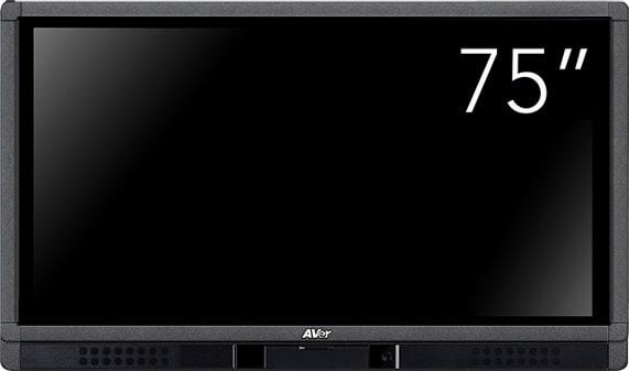 Avermedia AVIFPCP75