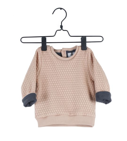 Piupia - Coral Hive Sweat Shirt