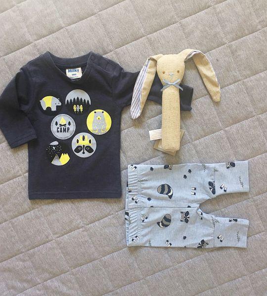 Gift Pack - Little Raccoon Boy