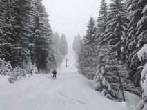La Tania Snow Reports - March 2019