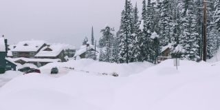 Big White Snow Reports - February 2020