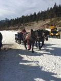 Corvara Snow Reports - February 2017