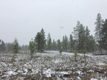Snow in Lapland For The Start of Summer