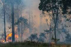 Most Australian Ski Areas Threatened by Bush Fires
