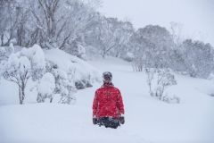 Big Snowfalls in Australia