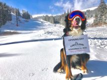 Five Colorado Ski Areas Open from Friday