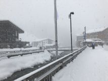 Lech Snow Reports - January 2019