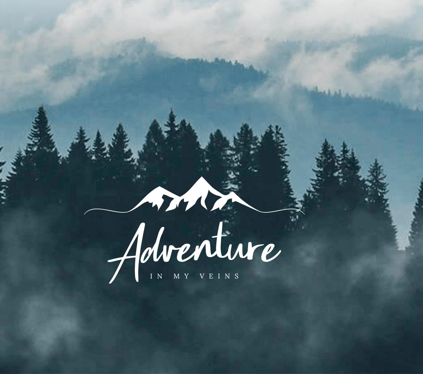 Adventure in my veins website