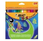 Fargeblyant BIC Tropicolor (24)