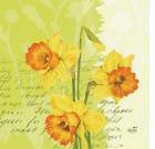 Serviett DUNI 3-lag 33cm Spring Flowers (250) 183885