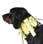 Dogtech Pro Neck