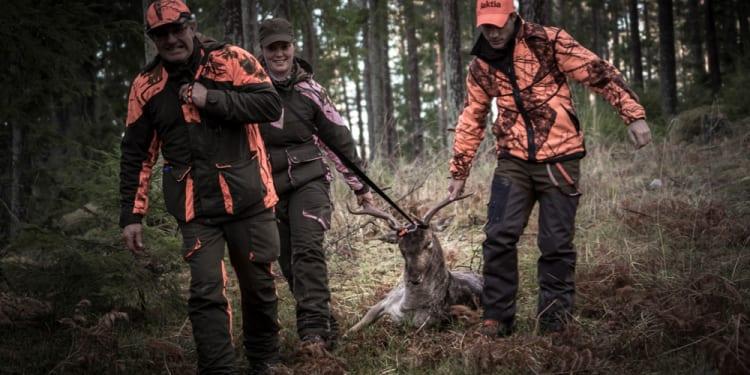 Hvordan finne jakt?