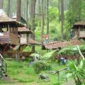 Rumah-Pohon-Bekasi