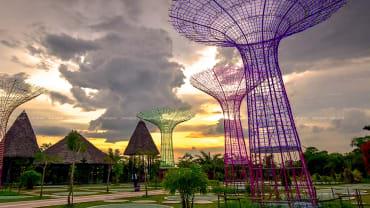 tower bunga jambi paradise