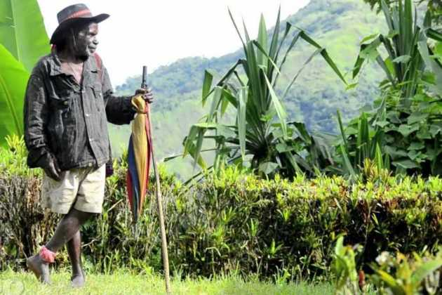 Papua New Guinea farmer